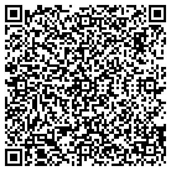 QR-код с контактной информацией организации ШЕМЕТОВСКАЯ ШКОЛА
