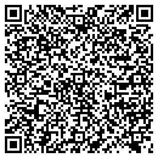 QR-код с контактной информацией организации МИШУТИНО