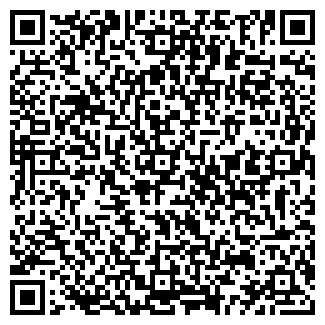QR-код с контактной информацией организации ШЕМЕТОВО