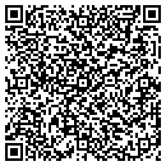 QR-код с контактной информацией организации ЛИЦЕЙ № 1575