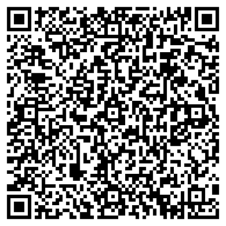 QR-код с контактной информацией организации Марина, ИП