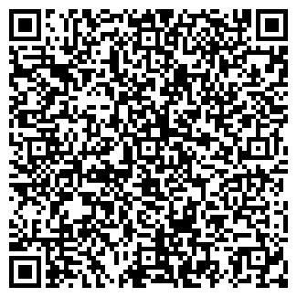QR-код с контактной информацией организации ИП СИНЕОКАЯ Е.А.