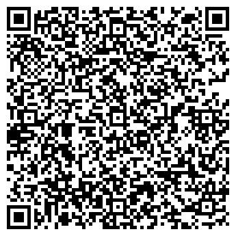 QR-код с контактной информацией организации СТРОЙСЕРВИСИНВЕСТ
