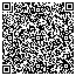QR-код с контактной информацией организации НАЛИВАЙКО, ЧП