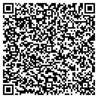 QR-код с контактной информацией организации VD MAIS, НПФ