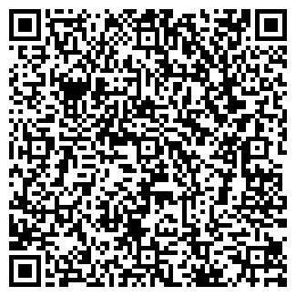 QR-код с контактной информацией организации СТЕФЮК О.Я., ЧП