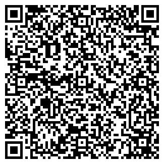 QR-код с контактной информацией организации LADY VIK, ТМ