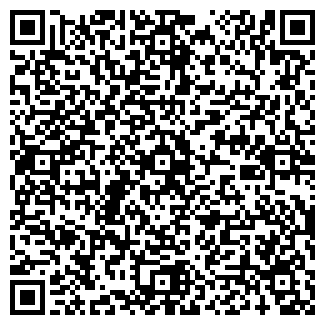 QR-код с контактной информацией организации ВИПОЛ, АО