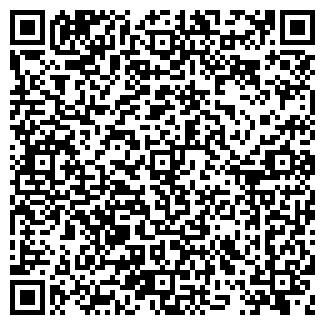 QR-код с контактной информацией организации РИМ, ООО