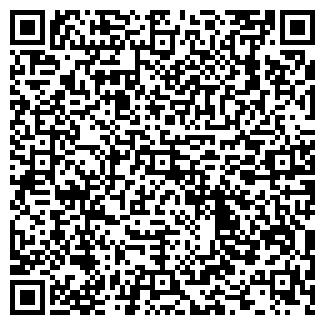 QR-код с контактной информацией организации INGDIVISION