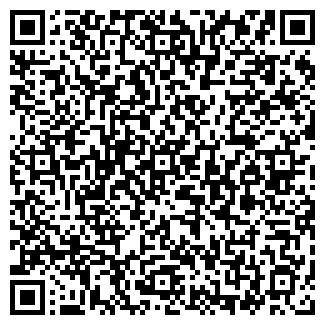QR-код с контактной информацией организации ВОЛОДИМИР, ООО