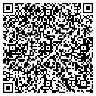 QR-код с контактной информацией организации ДАТЧИК, ЧФ