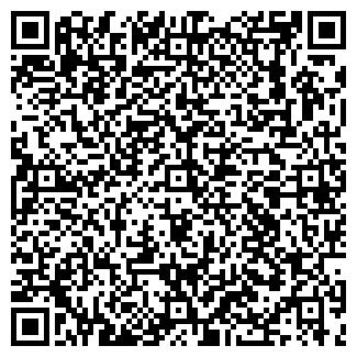 QR-код с контактной информацией организации ПЛЕЯДЫ, ООО