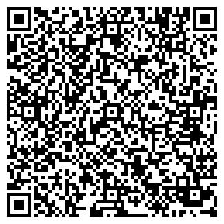 QR-код с контактной информацией организации ПАВЛИН, ЧП