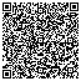 QR-код с контактной информацией организации ДУБНЕНСКАЯ ШКОЛА