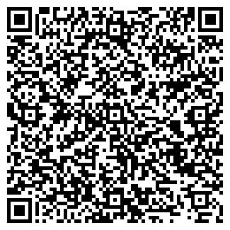 QR-код с контактной информацией организации ВАСЬКИНСКАЯ ШКОЛА