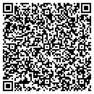 QR-код с контактной информацией организации БЛИЦ, ПКФ