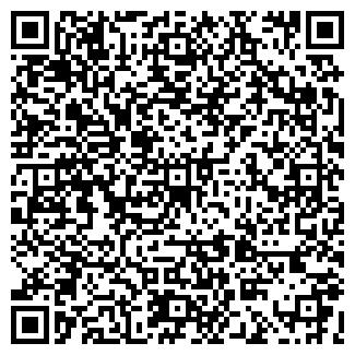 QR-код с контактной информацией организации ШКОЛА ПОС. БАКШЕЕВО