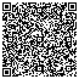 QR-код с контактной информацией организации АЛИЗЕ, САЛОН