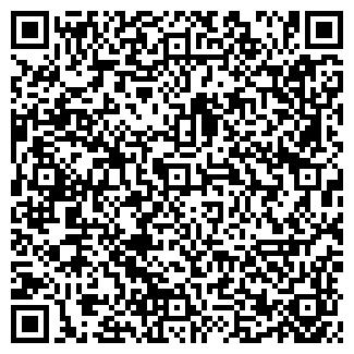 QR-код с контактной информацией организации АЛИНА ЛТД