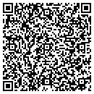 QR-код с контактной информацией организации СИНАРА, ЧФ