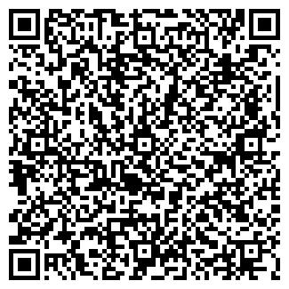 QR-код с контактной информацией организации DEMOLIS