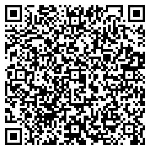QR-код с контактной информацией организации ИП ЧП ПИЦЫК