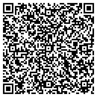 QR-код с контактной информацией организации ЛИЛИЯ, МЧП