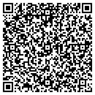 QR-код с контактной информацией организации ЛИНКЕЙ, ЧП