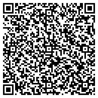 QR-код с контактной информацией организации ПИЛОТ, ЧП