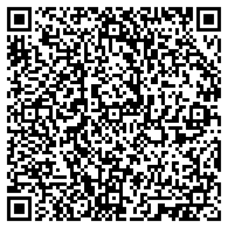 QR-код с контактной информацией организации ПЛАСТИНВЕСТ, ЧП