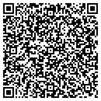 QR-код с контактной информацией организации ЛИСА