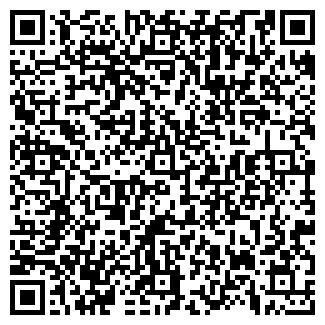 QR-код с контактной информацией организации ДЕБЮТ, ОАО