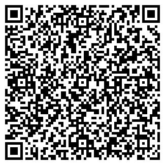 QR-код с контактной информацией организации КОПЫЛОВ С.В., ЧП