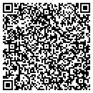 QR-код с контактной информацией организации НОВОСТОК