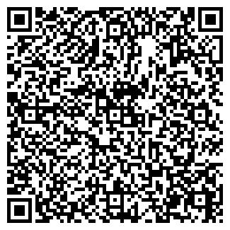 QR-код с контактной информацией организации Аптека № 197