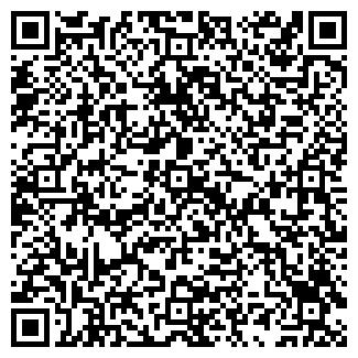 QR-код с контактной информацией организации Аптека № 241