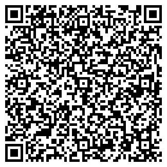 QR-код с контактной информацией организации СМИ, ООО