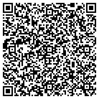 QR-код с контактной информацией организации ШЛИССЕЛЬБУРГСКАЯ ДХШ