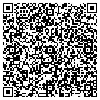"""QR-код с контактной информацией организации Фонд """"Димина Мечта"""""""