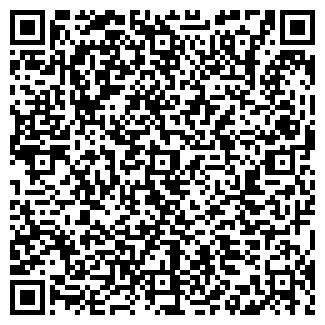 QR-код с контактной информацией организации ЭЛЬСТАР ЛТД.