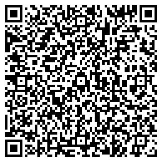 QR-код с контактной информацией организации БЕРЕНДЯ, ИП