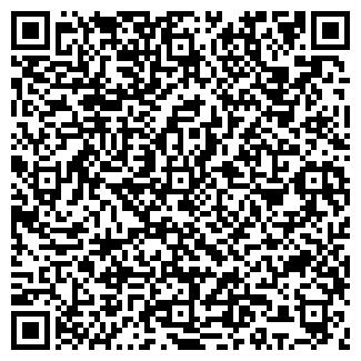 QR-код с контактной информацией организации ИНЕЙ, ОАО