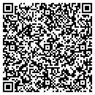 QR-код с контактной информацией организации ПУЛЬСАР, ЧП