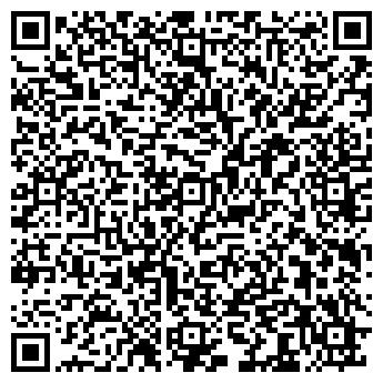 QR-код с контактной информацией организации СИБИРСКИЕ ЗВЕЗДЫ