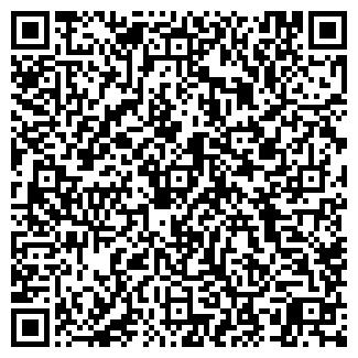QR-код с контактной информацией организации ПЛАНЕТА ГИС, ООО