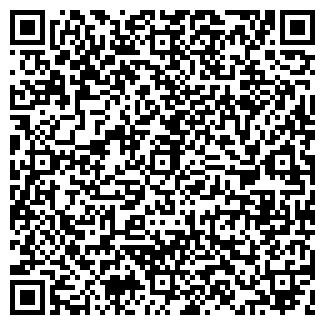 QR-код с контактной информацией организации ВЬЮГА, ООО