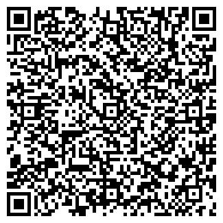 QR-код с контактной информацией организации БАМБИНО, ИП