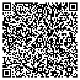 QR-код с контактной информацией организации ДИЗФОР, ООО