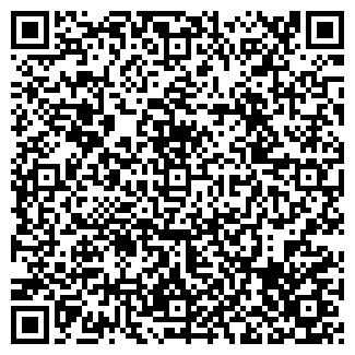 QR-код с контактной информацией организации СВЕТОЛИТИЕ